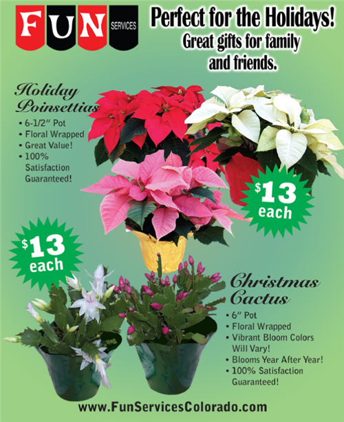 Poinsettia & Christmas Cactus Fundraiser (10/30-11/12)! Band, Orchestra, and Mariachi