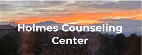 Holmes Counseling Website