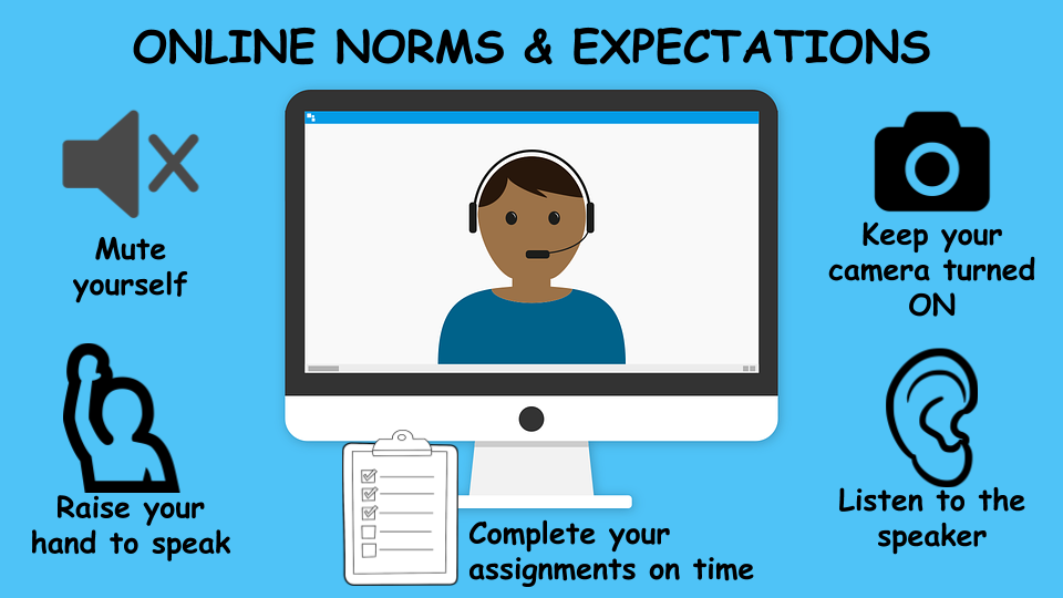 Online Norms and Expectations