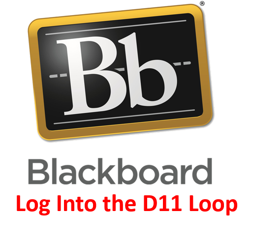 LOG INTO THE D11 LOOP